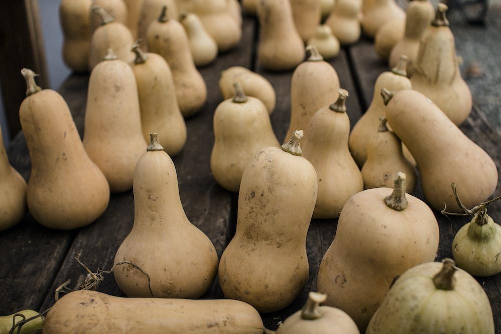 brown gourd lot