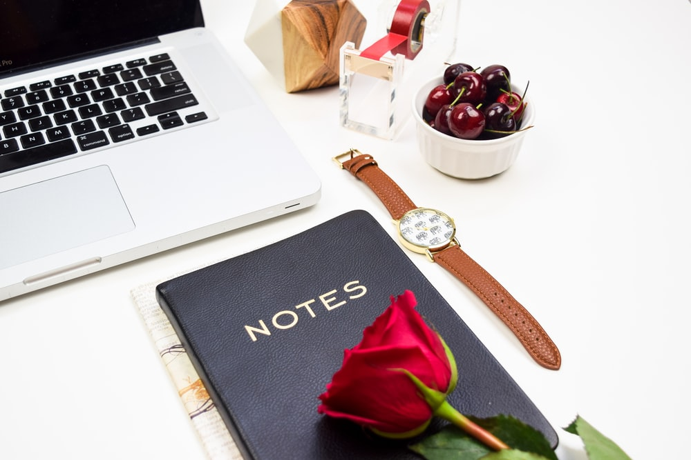 red rose on notebook near MacBook