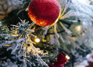macro photography of red bauble and lighted string lights on green Christmas tree