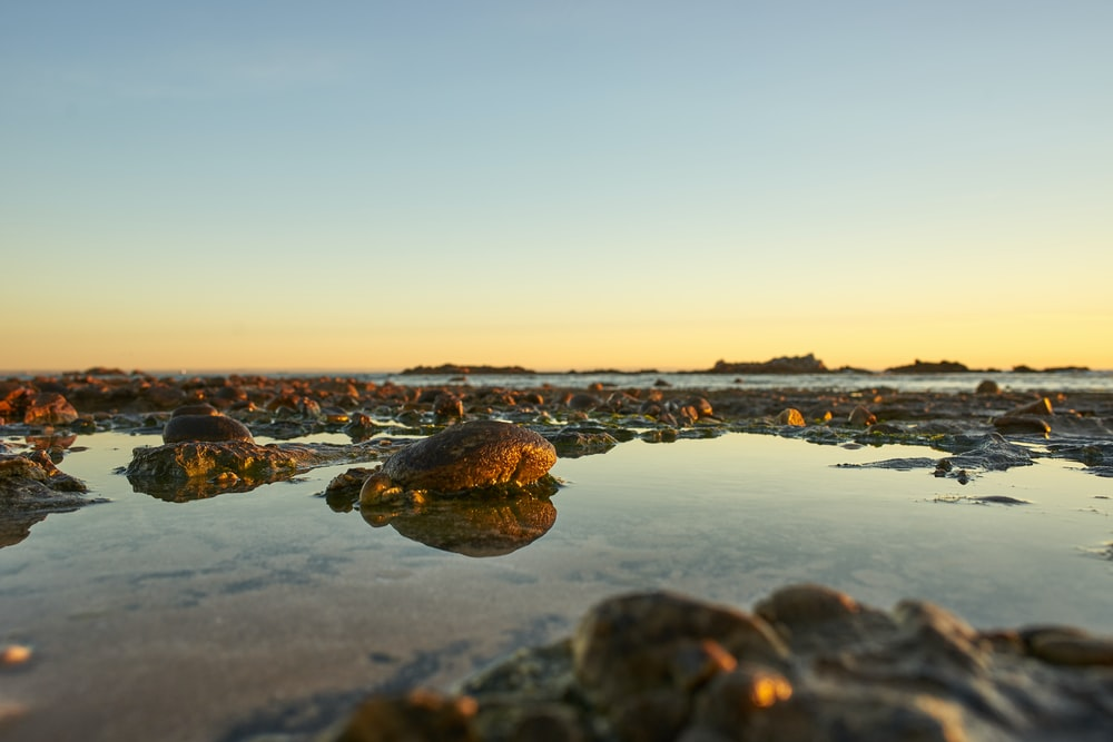 panoramic photography of rocks on shore during golden hour