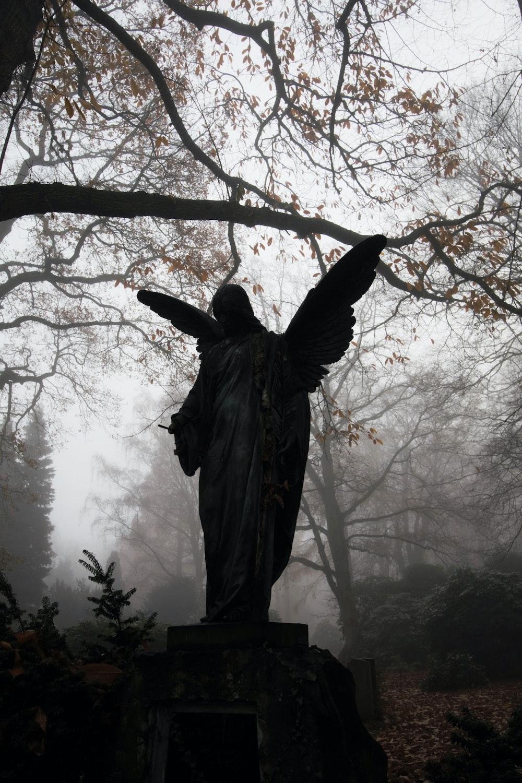 angel statue near tree