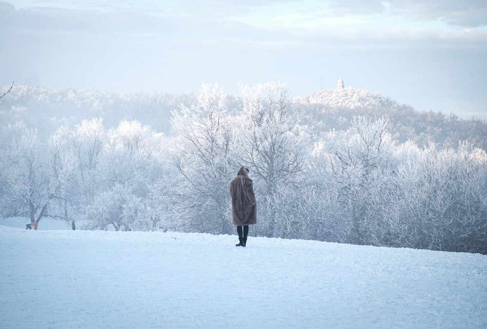 person standing on snow field near trees during day
