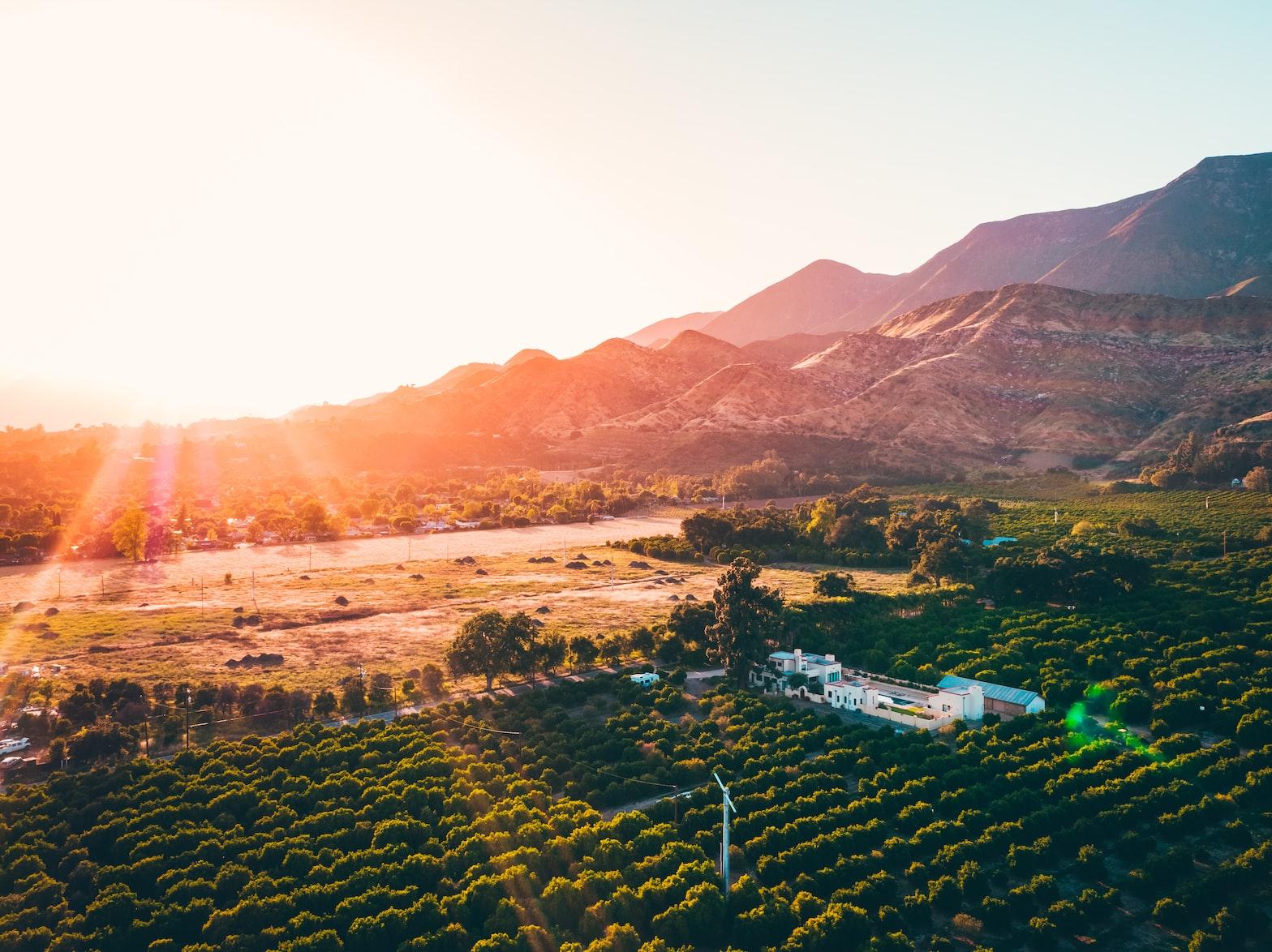 farms in Ojai, California