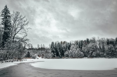 Winter landscape at a frozen lake in Buxheim, Bavaria (Germany)