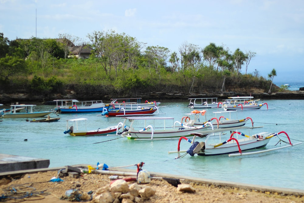 white-and-blue boats on shore during daytime