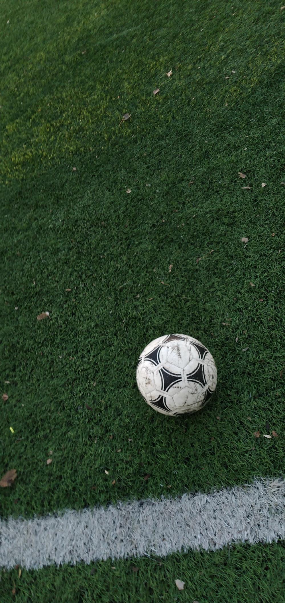 white and black soccer ball on grass