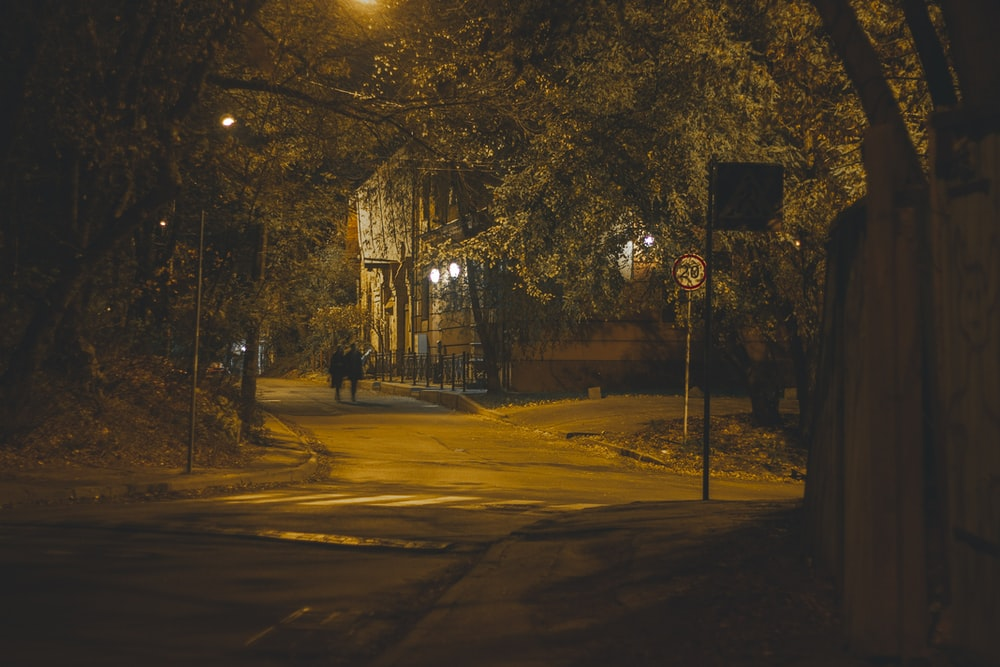 two person walking on the streets at night