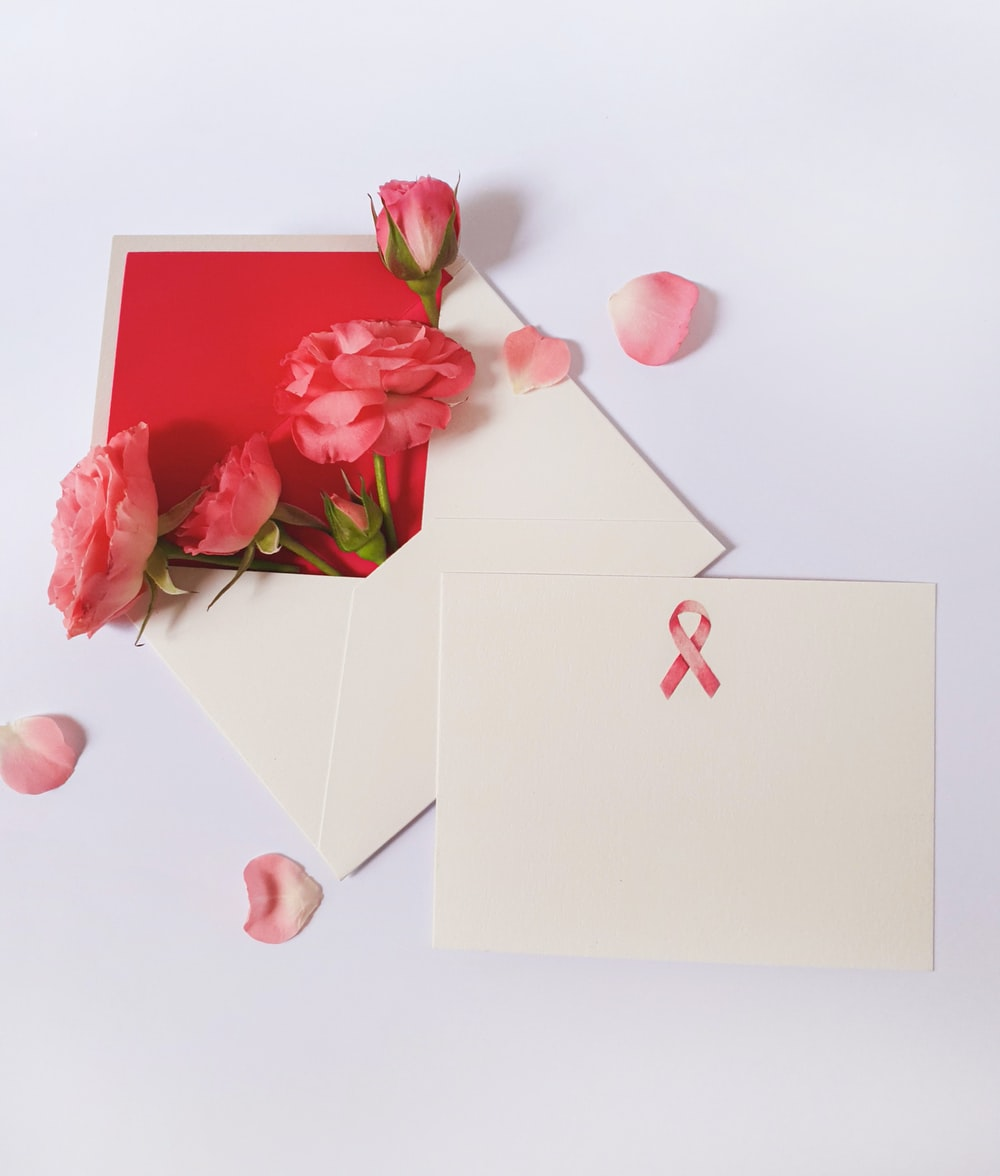 pink rose flower and mailing paper
