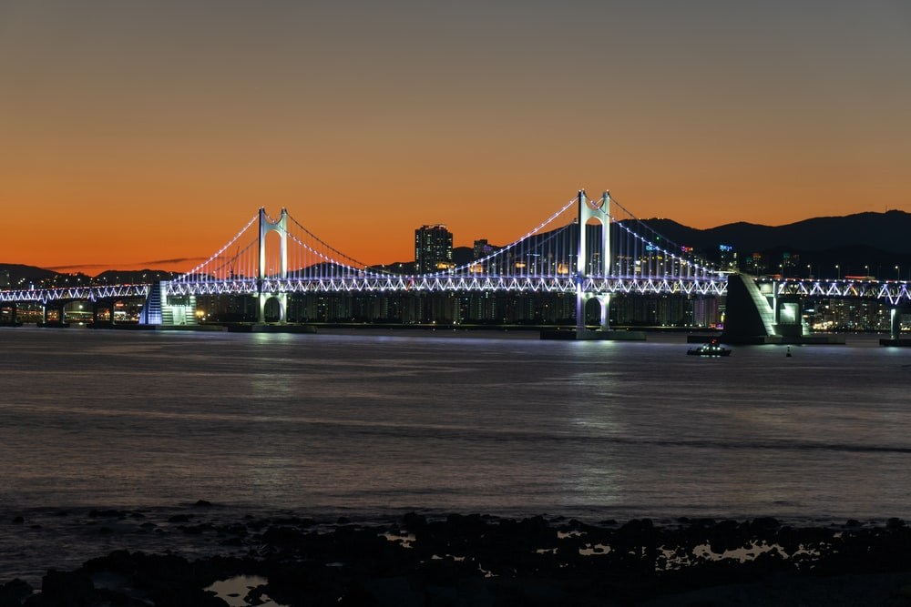 view photography of lighted bridge