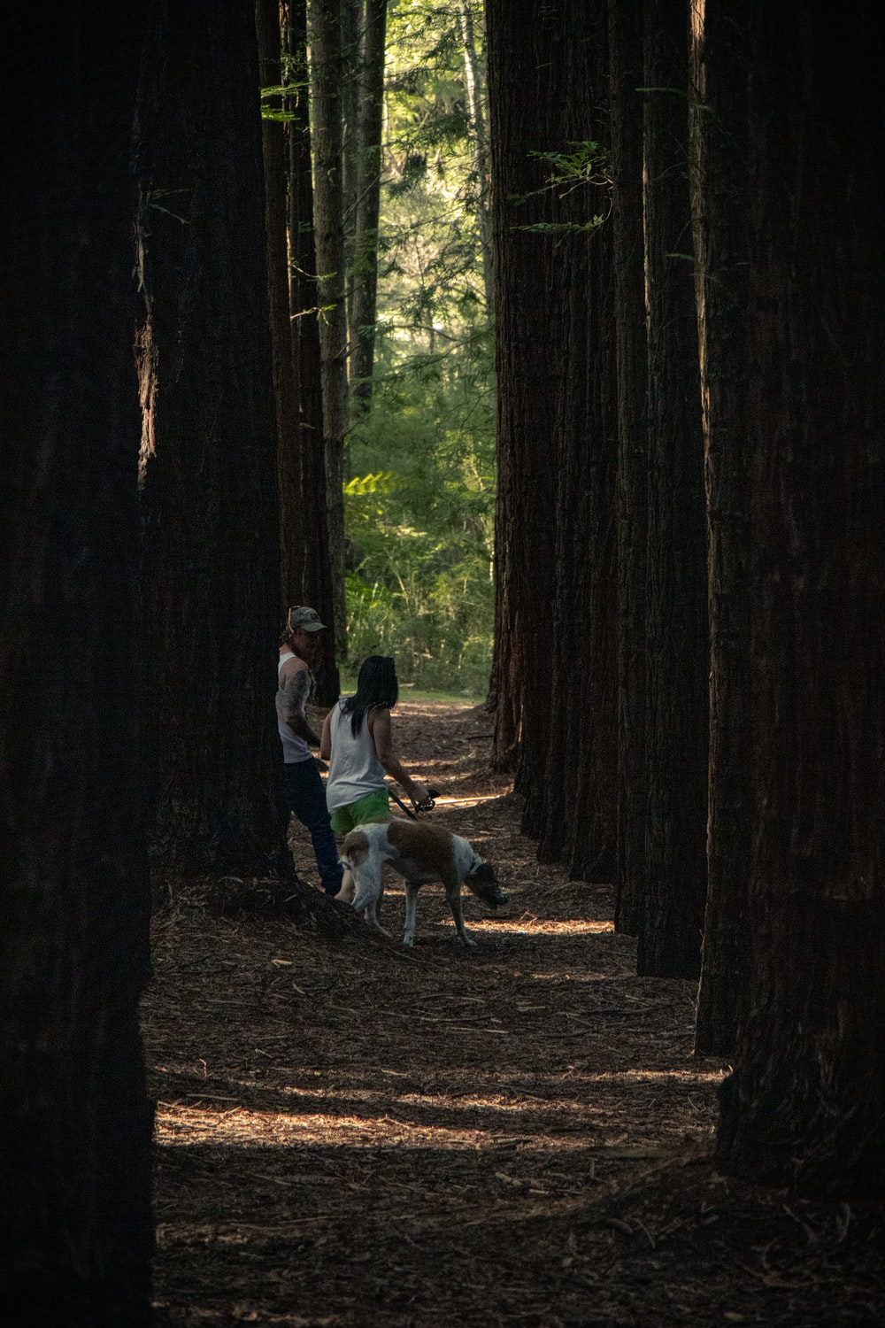 man and woman with dog on woods