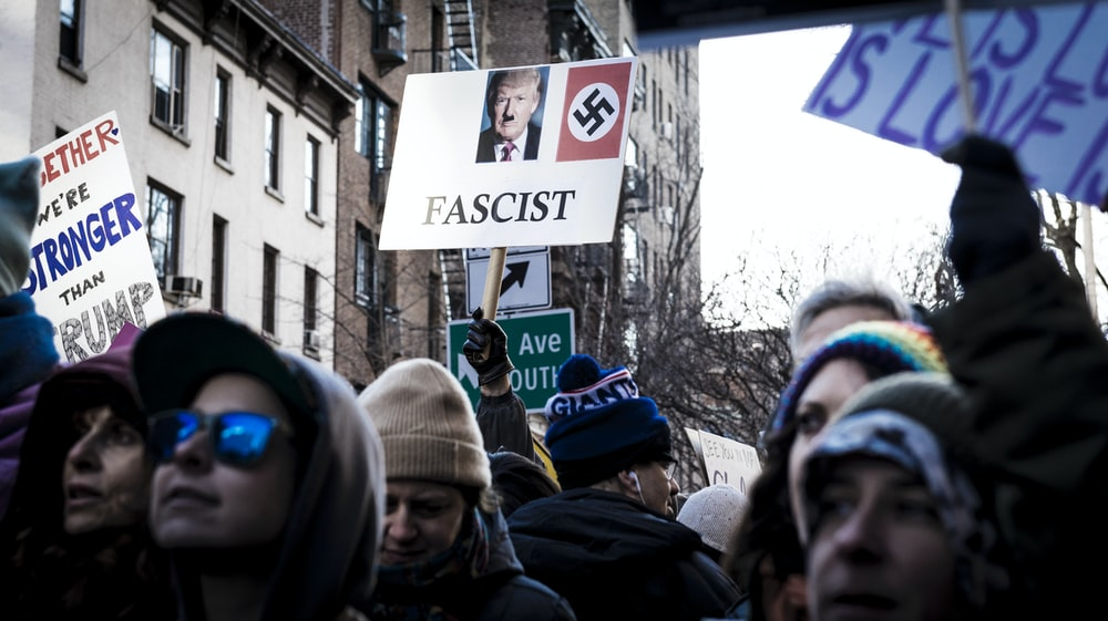 shallow focus photo of person holding Donald Trump signage