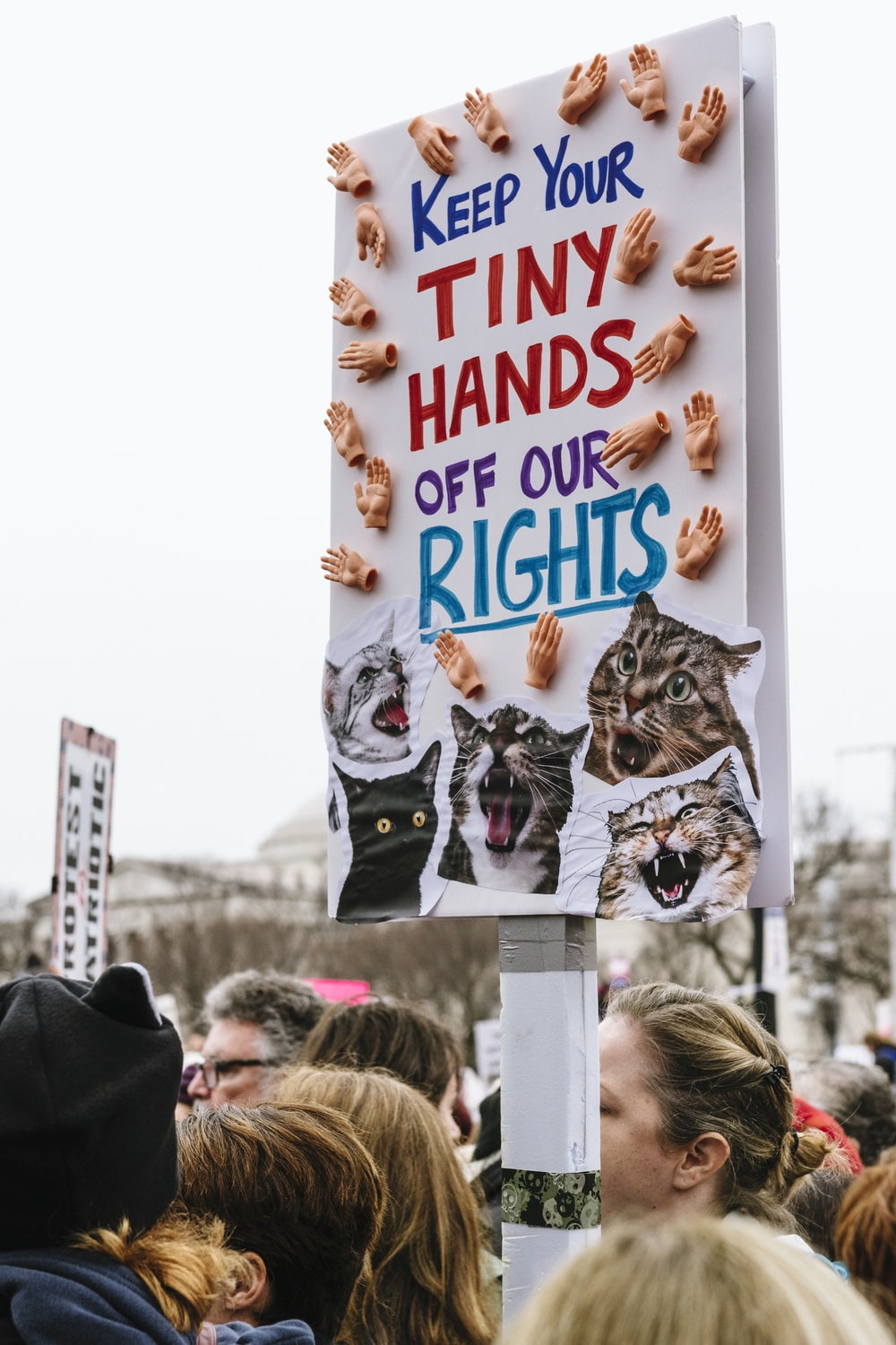 keep your tiny hands off our rights sign