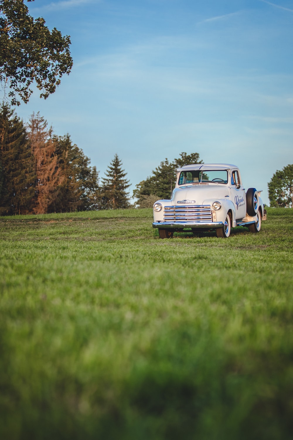 selective focus photo of classic white vehicle on grass field