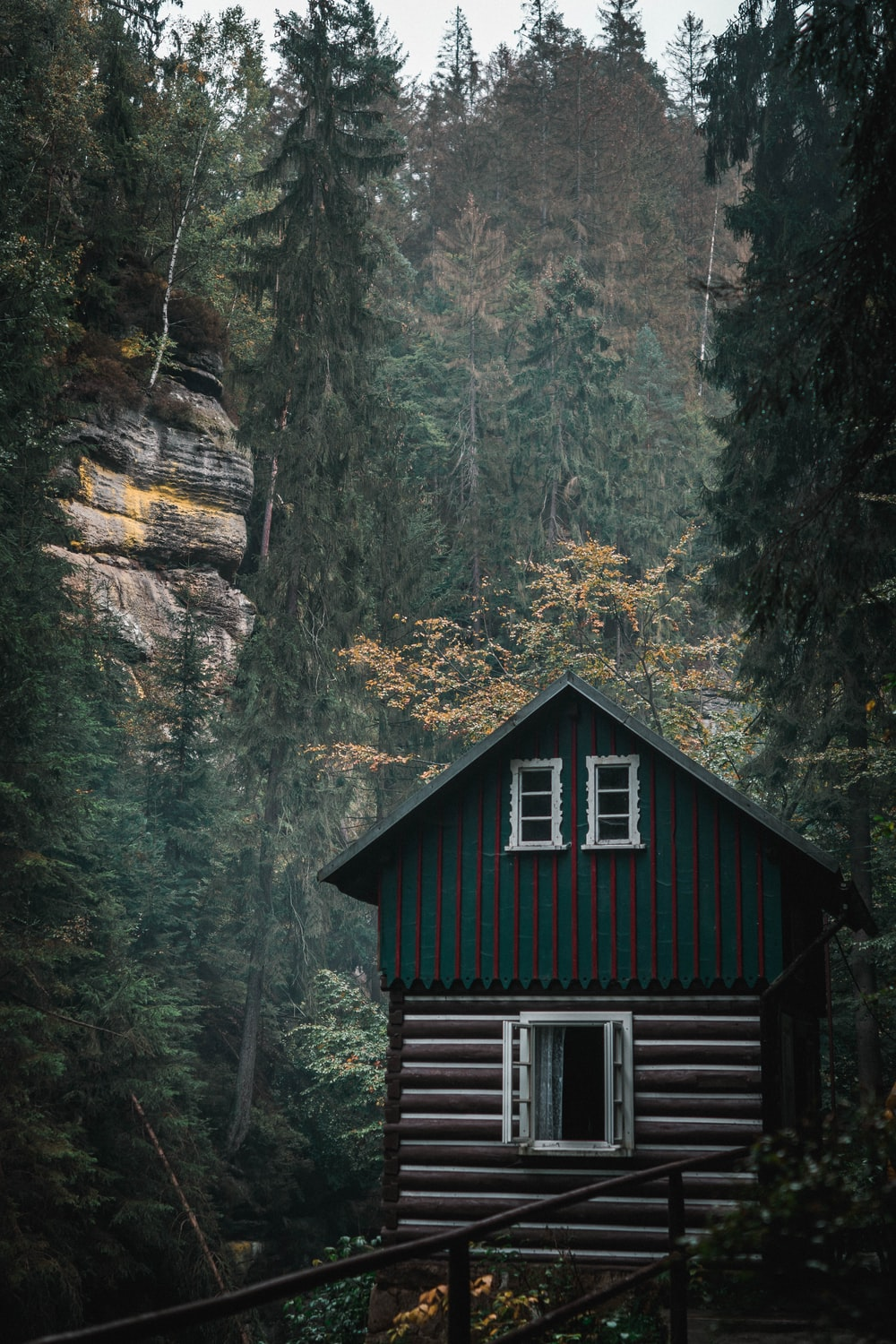 shallow focus photo of cabin near green trees