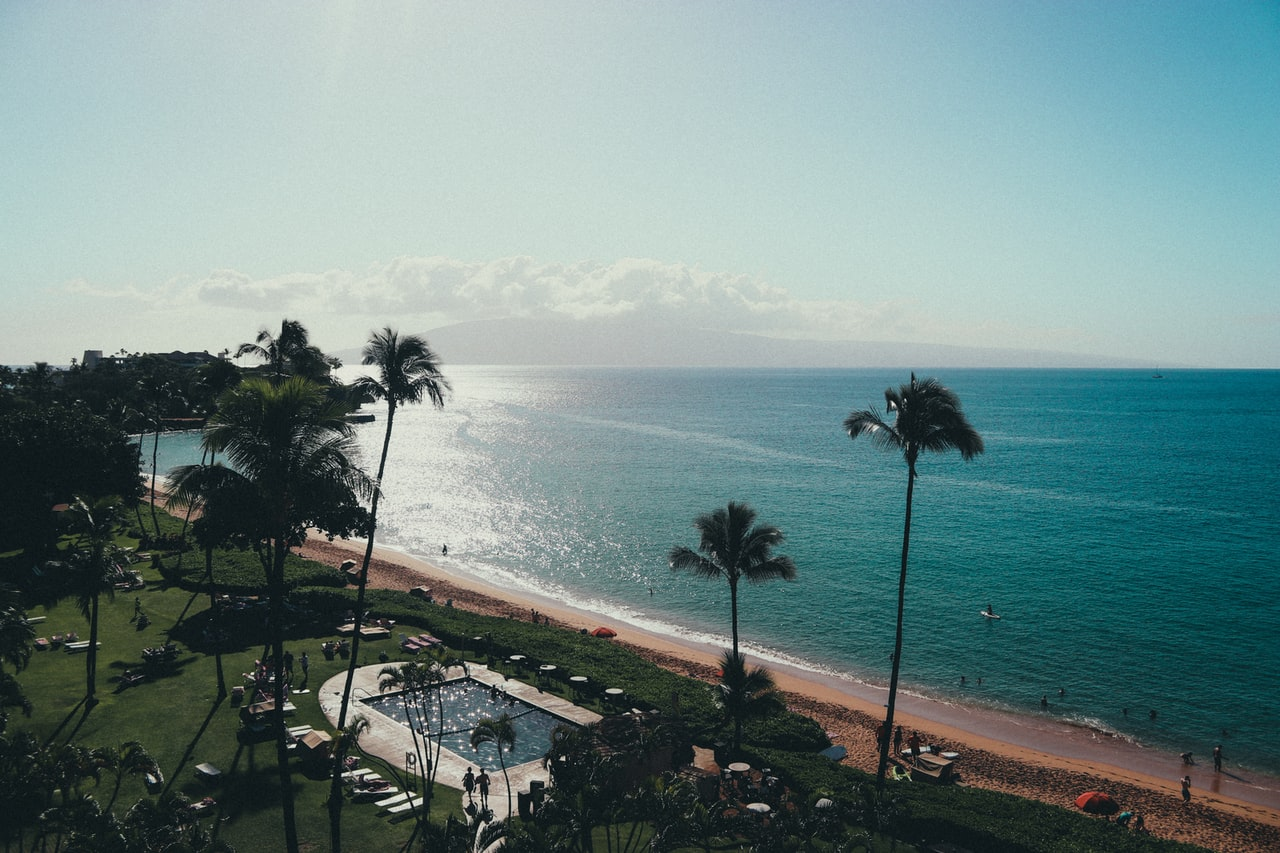 Aloha nui loa and welcome back, Jesseca Curry!