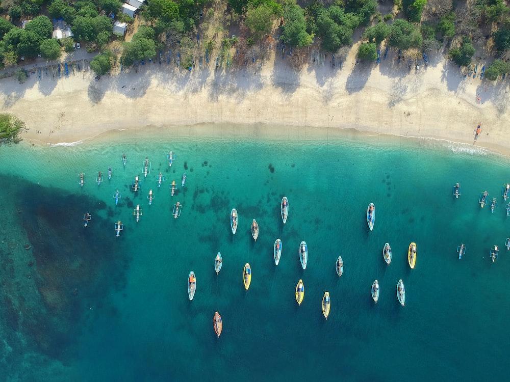 assorted boats on sea near shore