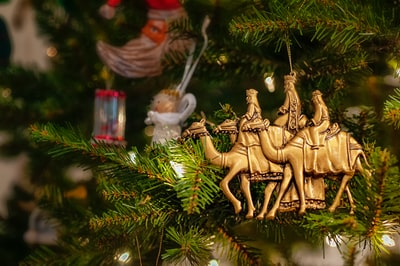 brown camel christmas tree decor wise men zoom background