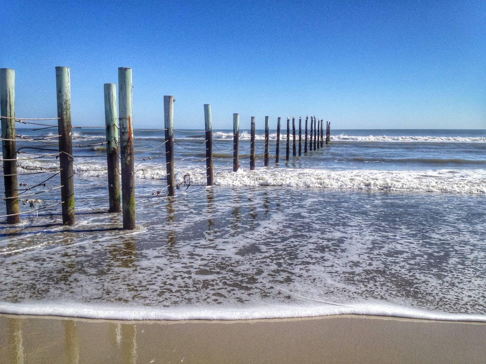 line of wooden post on beach