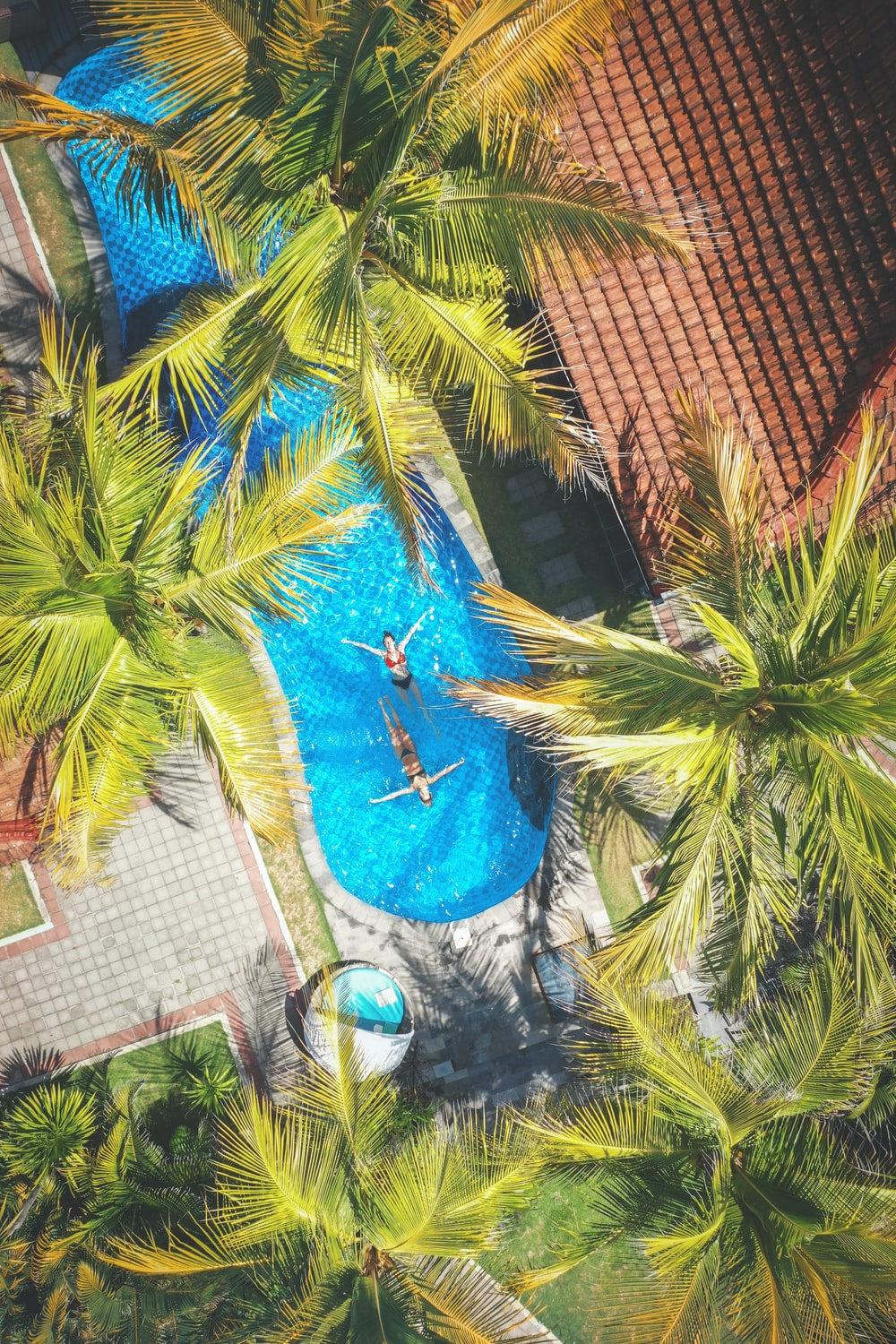 aerial photography of two people on swimming near coconut trees and resort houses