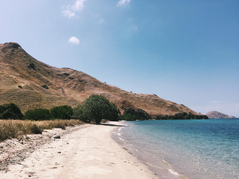 seashore and mountain scenery