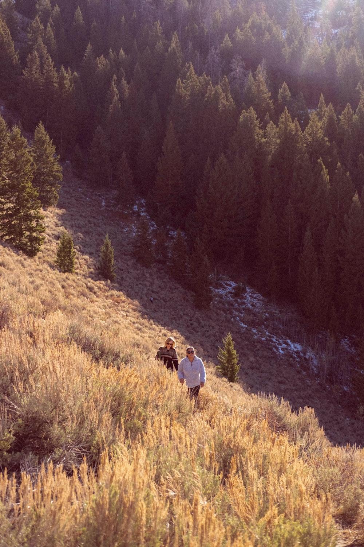person walking up mountain during daytime