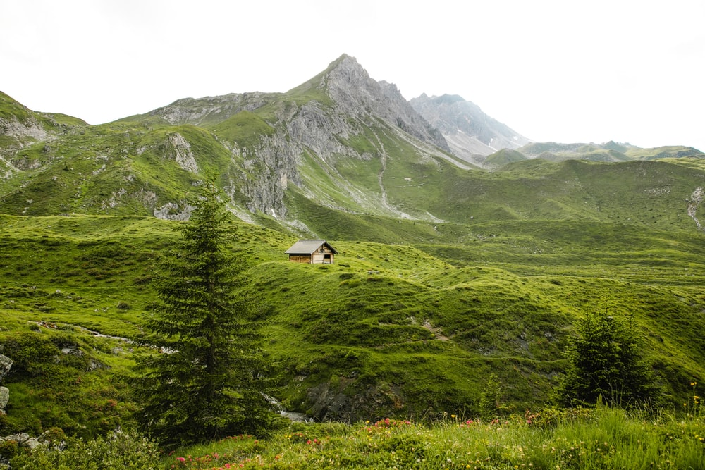 cabin on grass field near mountains during day