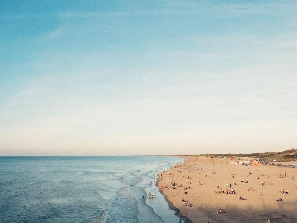 people near calm ocean