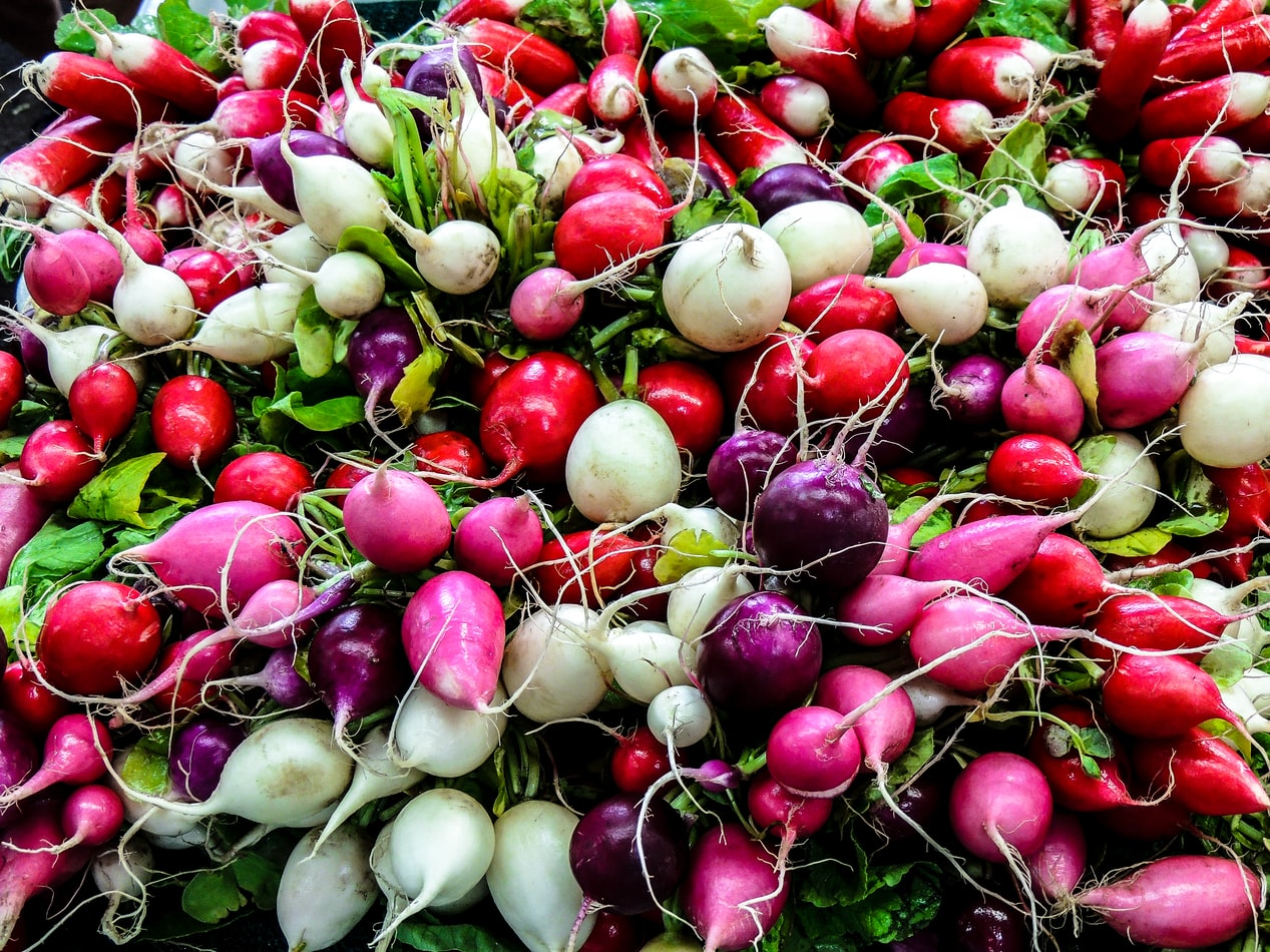 Horseradish picture