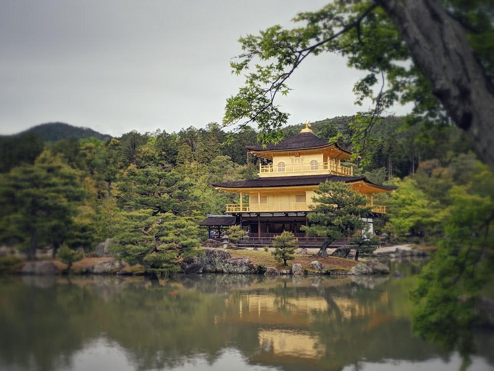 yellow and black pagoda
