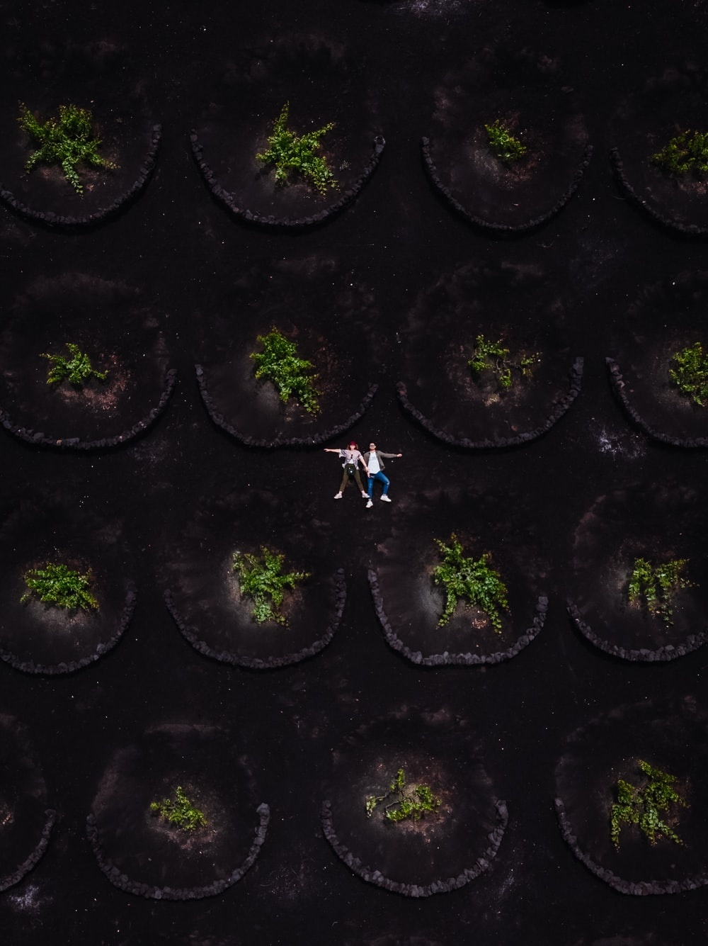 aerial photography of two men surrounded by trees