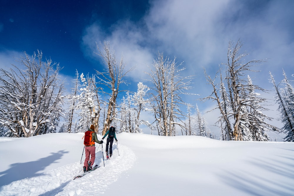 two person walking on snow