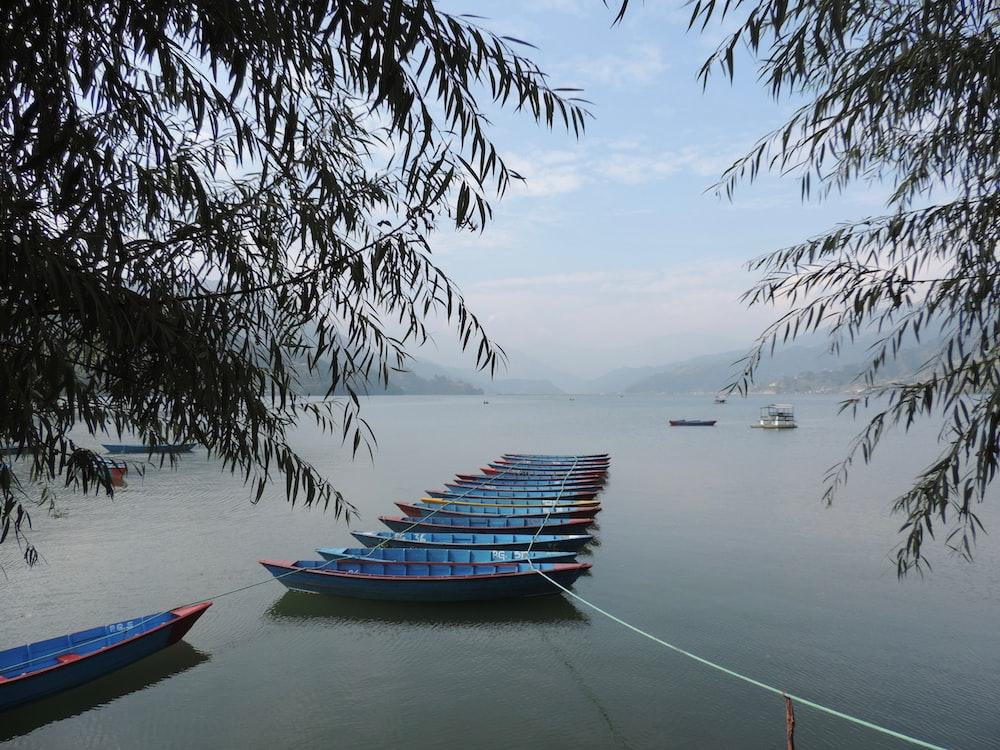 Boating in Phewa