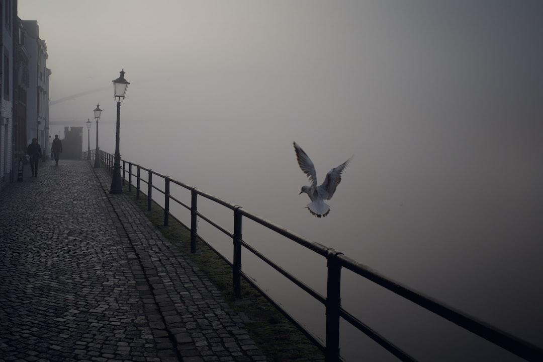 Misty morning in Maastricht.