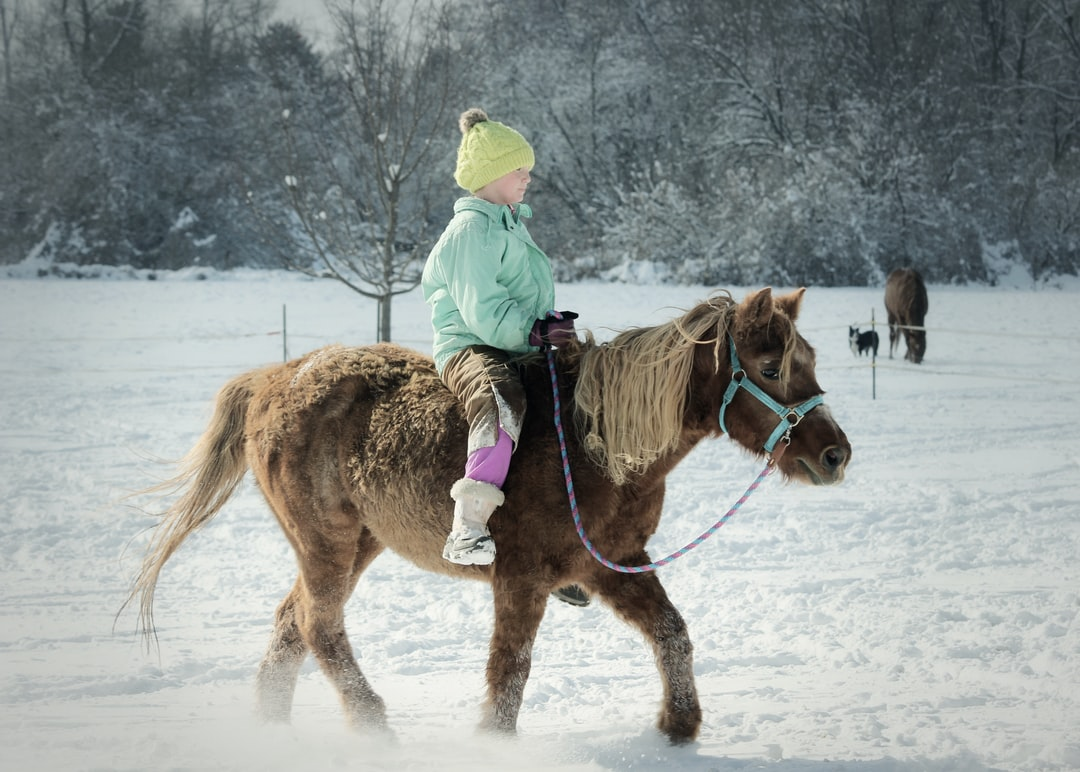 A girl rides a brown pony in the snow during winter.