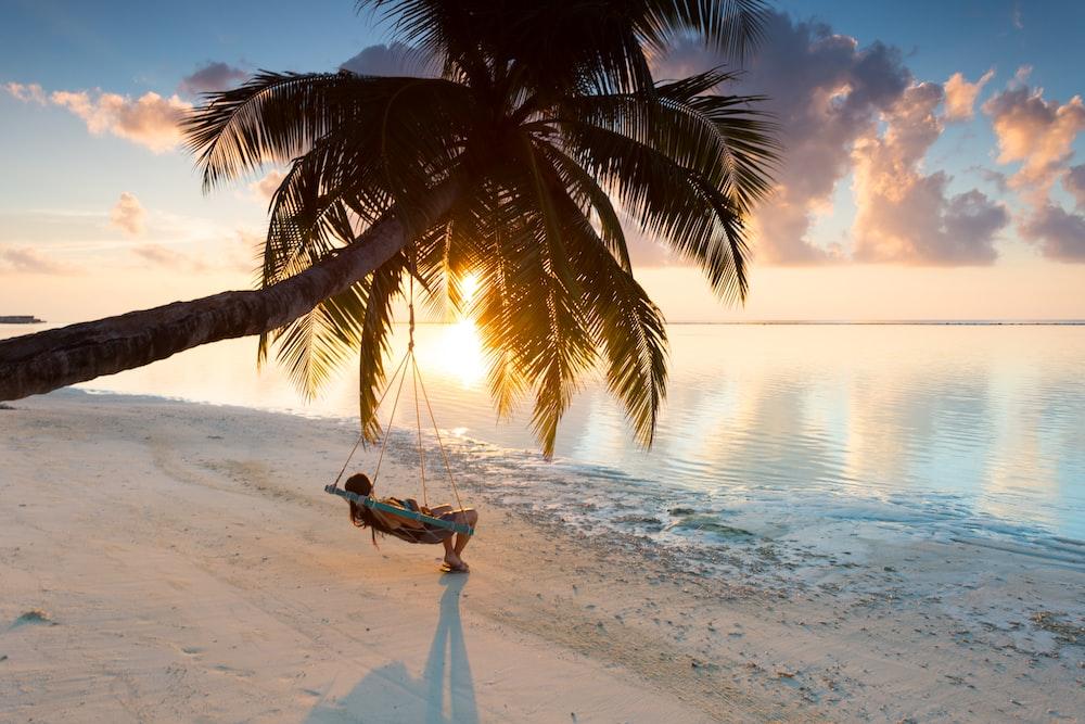 person swinging on hammock hanged on coconut tree near sea