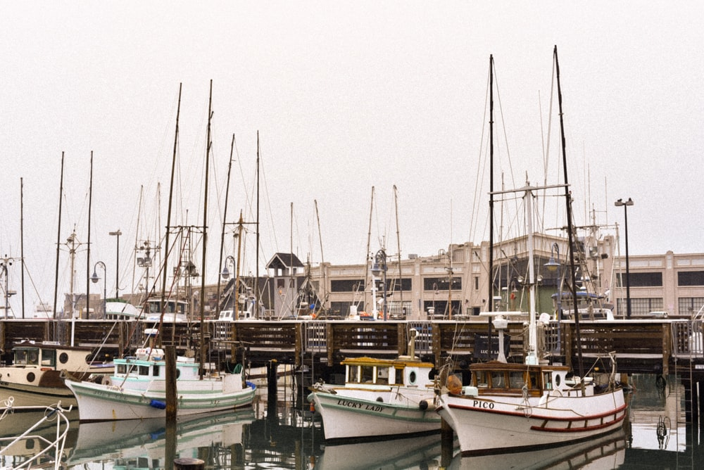 four white fishing boats parked behind building