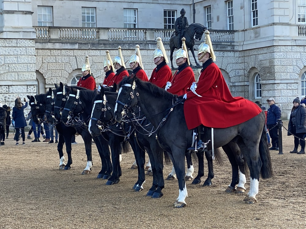 knights riding on black horse during daytime