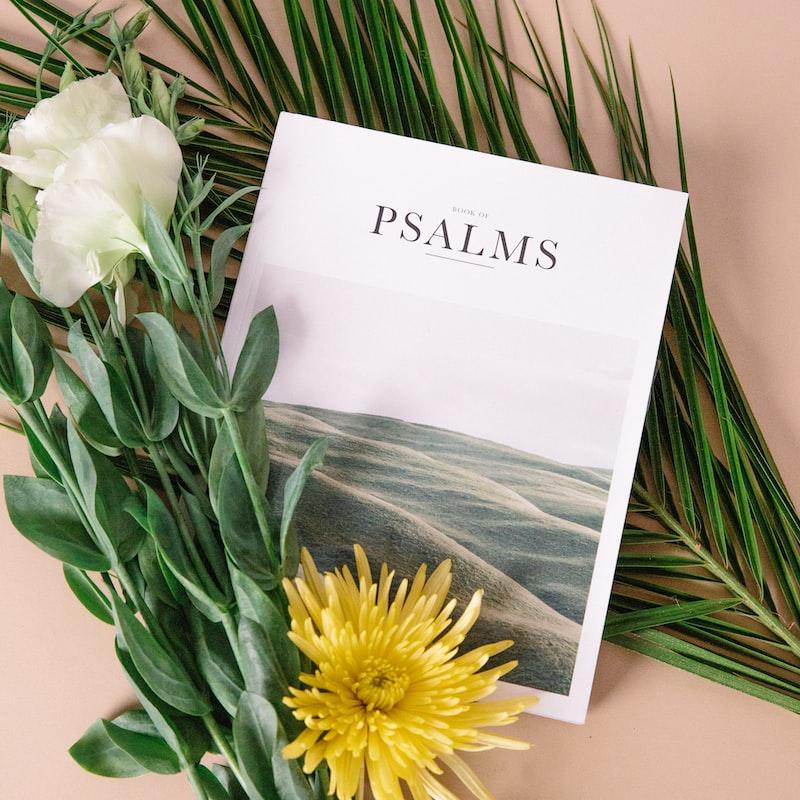 【3分钟默想 • 诗篇30: 12——临近生命终点时,你对主还存有活泼的盼望吗?】