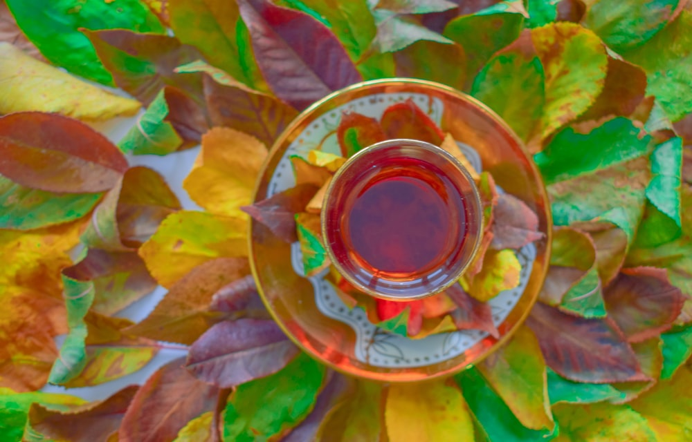 liquid in bowl on top of leaves