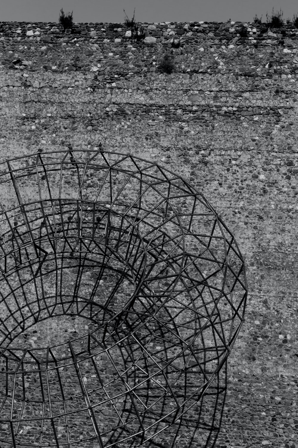 black metal cage on gray surface