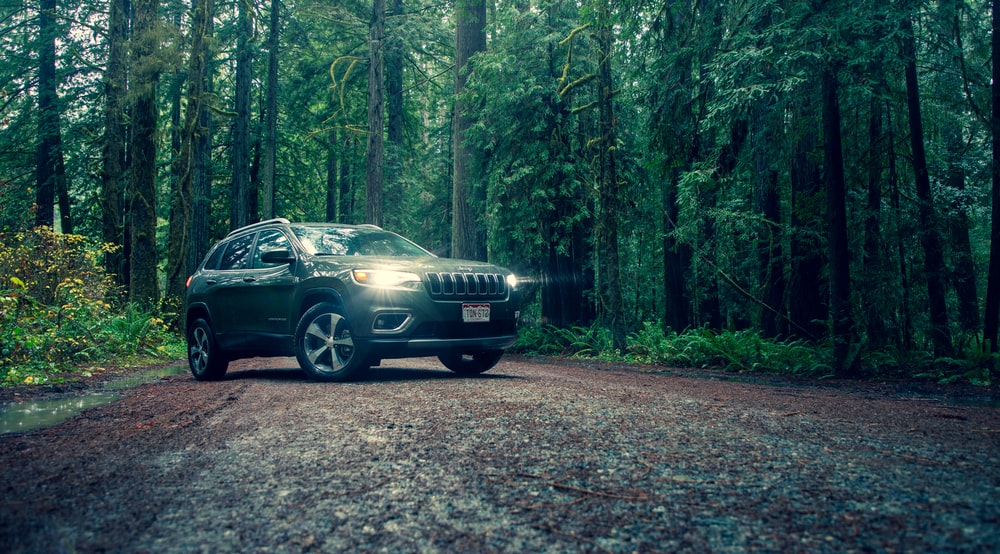 black Jeep Cherokee on roadway surrounded by trees