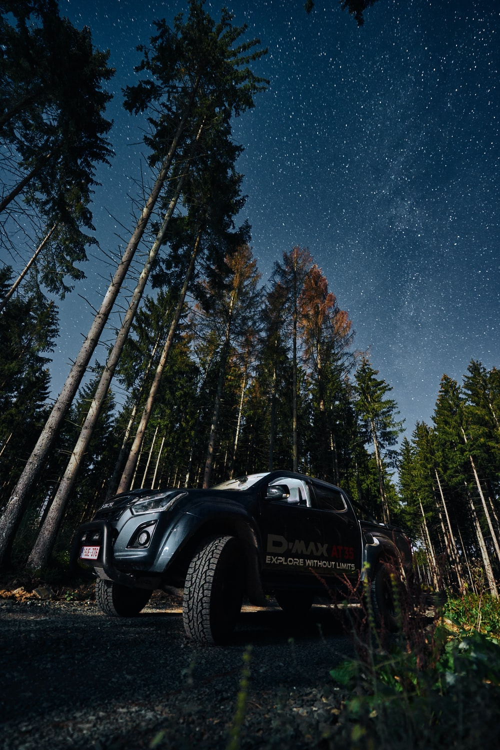black Isuzu D-Max parked near forest trees during night time
