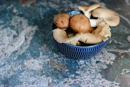 Spezialitäten ~ Ravioli dello Chef (Ricotta and penny bun)