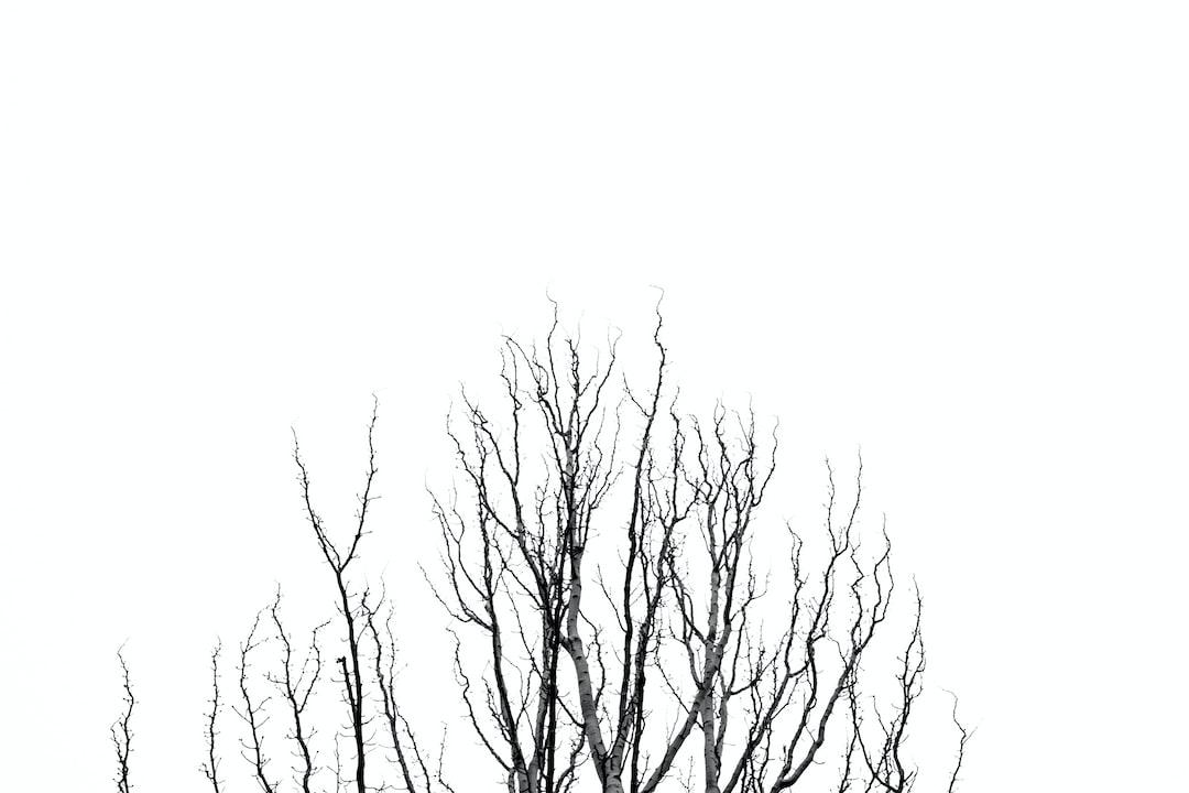 minimal tree branchs