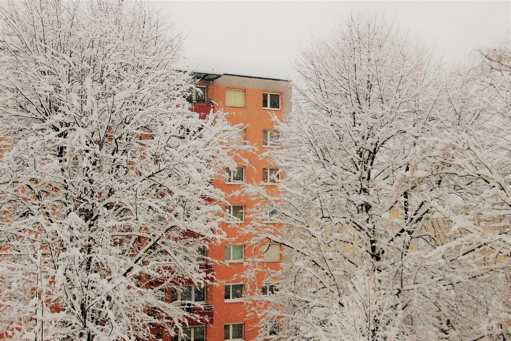orange concrete building near trees covered by white snow