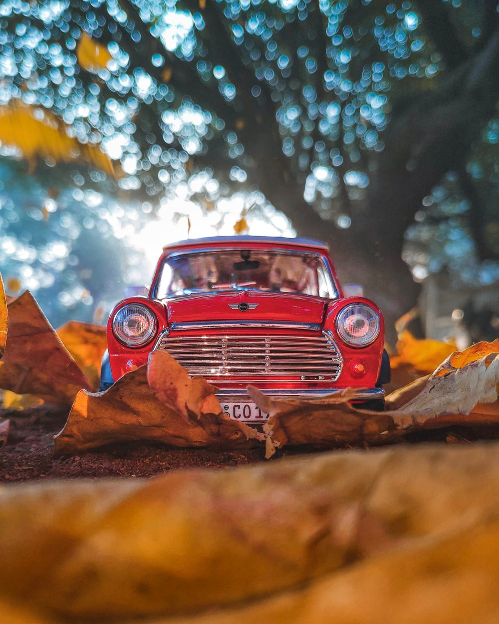 red vehicle near tree