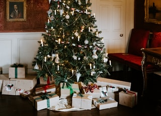 green Christmas tree with gift box inside room