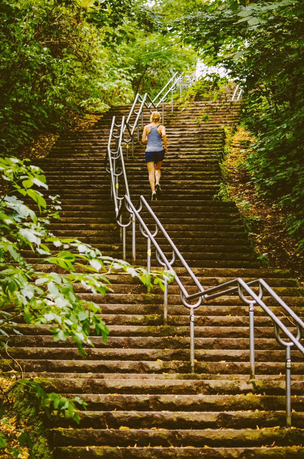 woman climbing stairs between trees