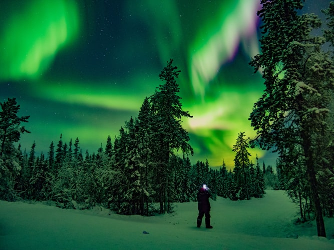 A person standing in a snowy forest with the Northern Lights above, lighting the sky up with green and yellow lights.