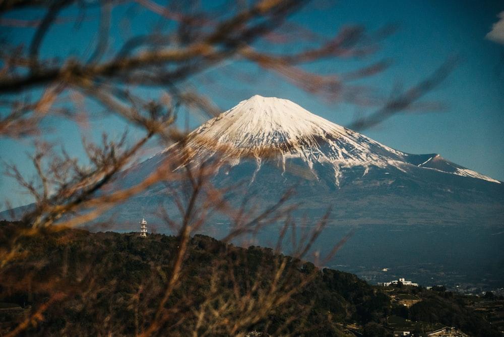 selective focus photography of Mt. Fuji